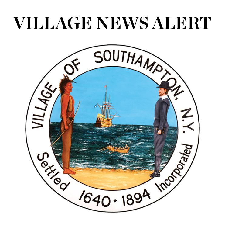Image of Village News Alert logo